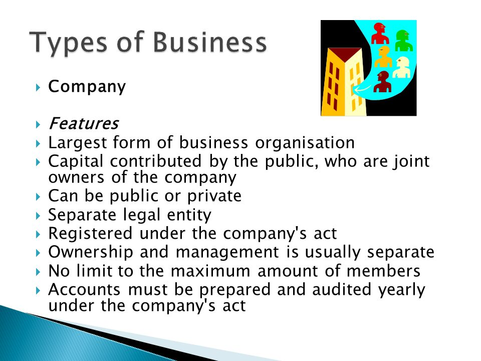 Types of Business Company Features