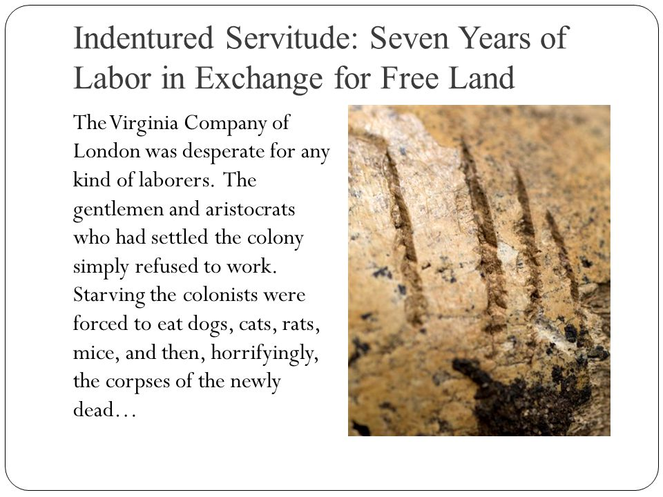 Indentured Servitude: Seven Years of Labor in Exchange for Free Land