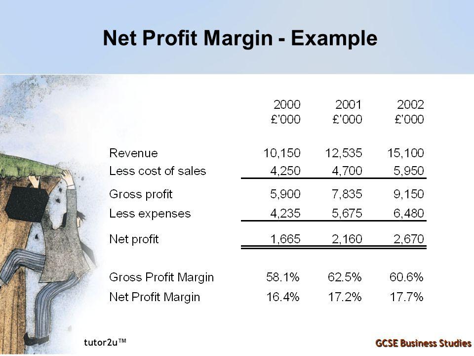 Net Profit Margin - Example
