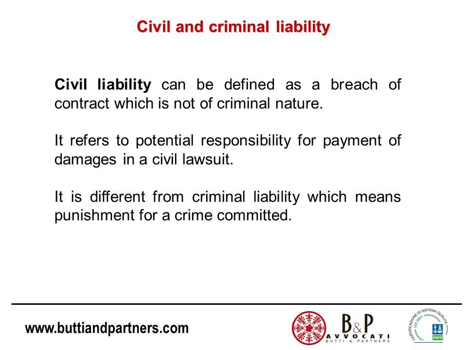 Civil and criminal liability