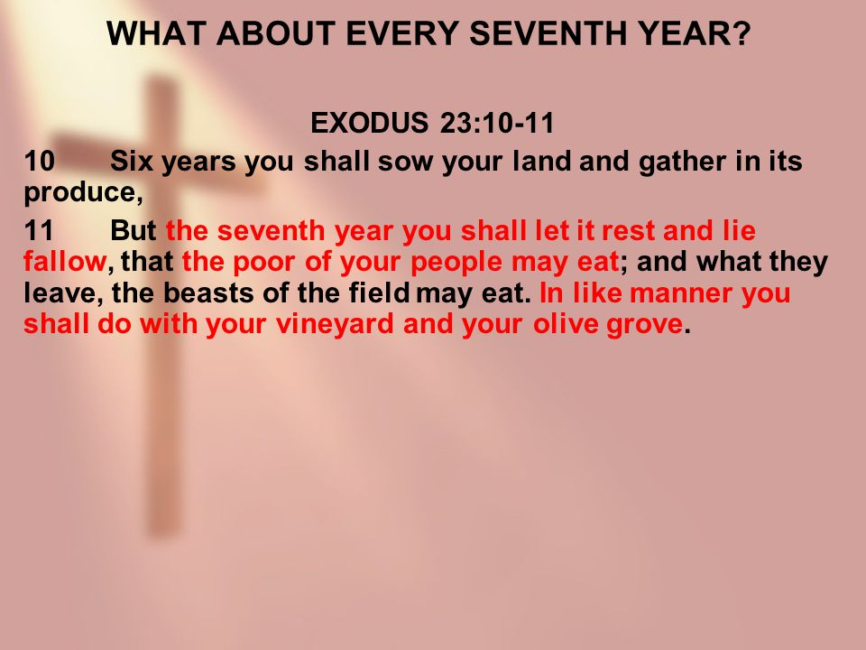 WHAT ABOUT EVERY SEVENTH YEAR