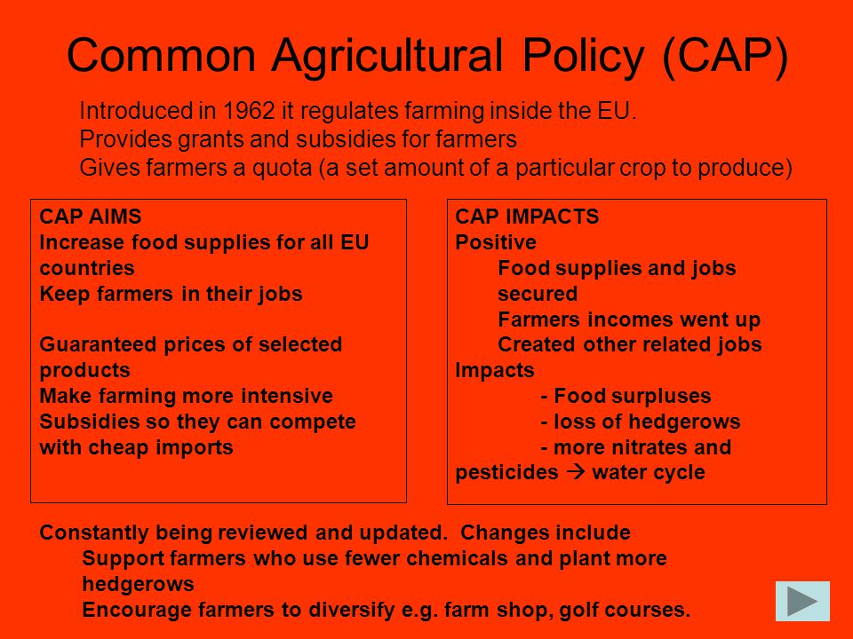 Common Agricultural Policy (CAP)