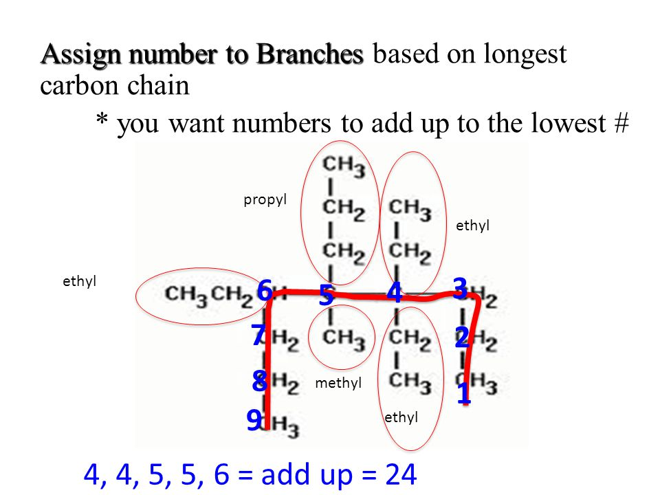 Assign number to Branches based on longest carbon chain