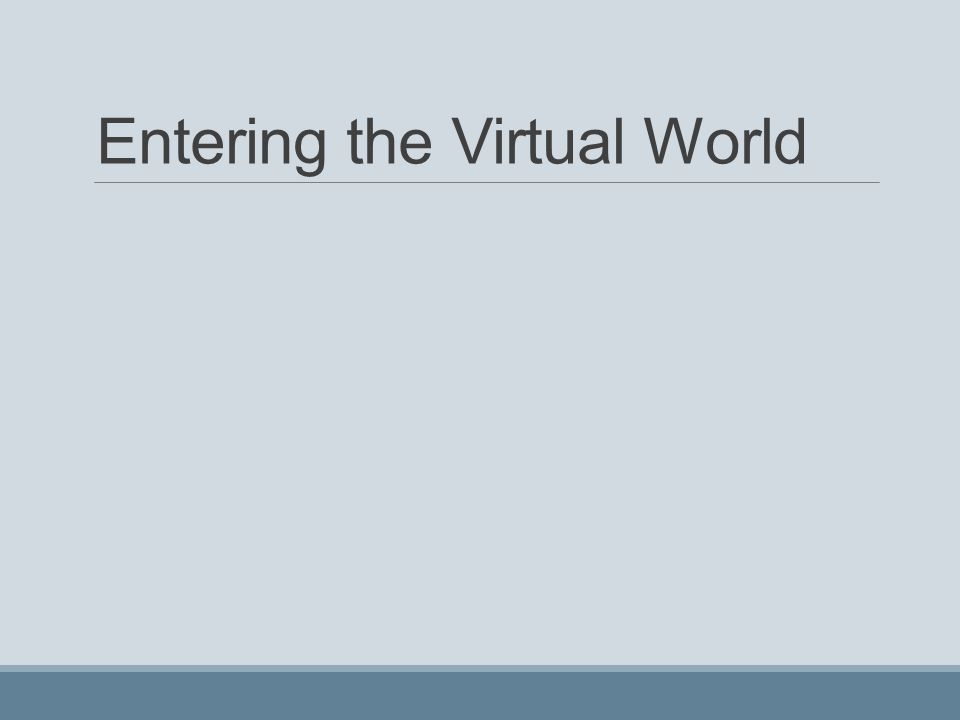 Entering the Virtual World