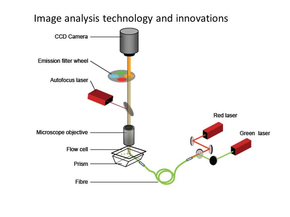 Image analysis technology and innovations