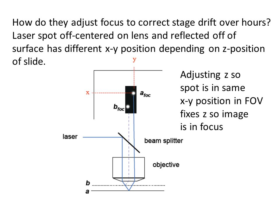 How do they adjust focus to correct stage drift over hours