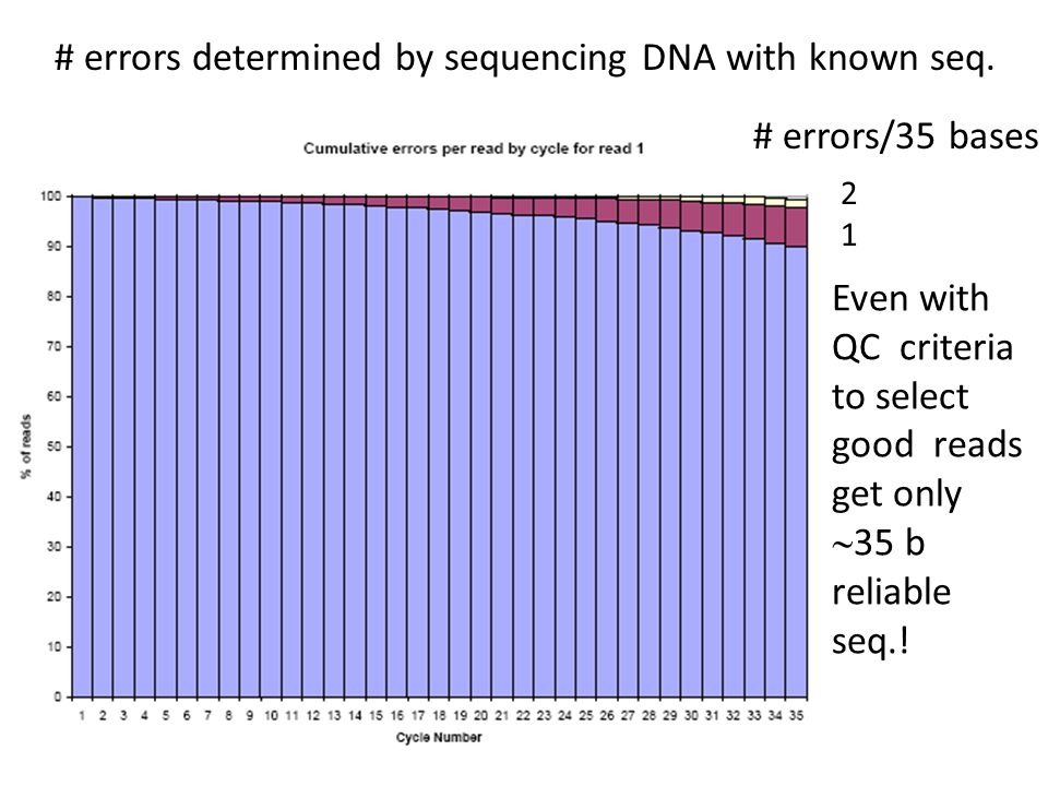 # errors determined by sequencing DNA with known seq.