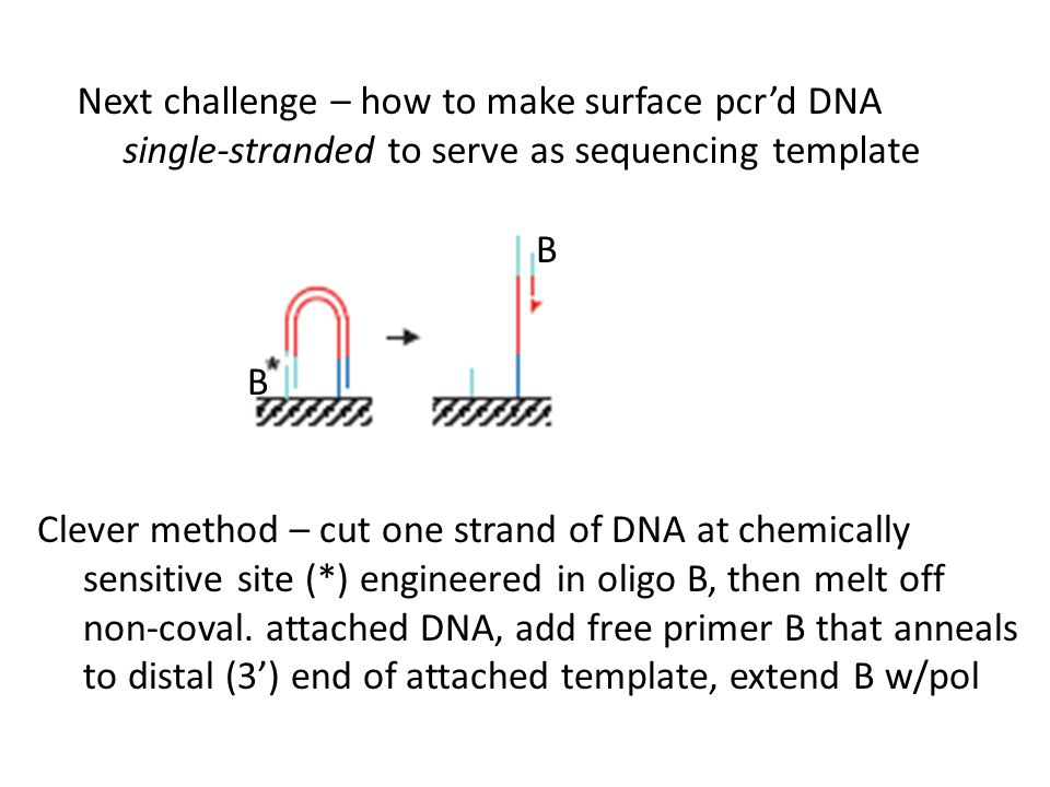 Next challenge – how to make surface pcr'd DNA