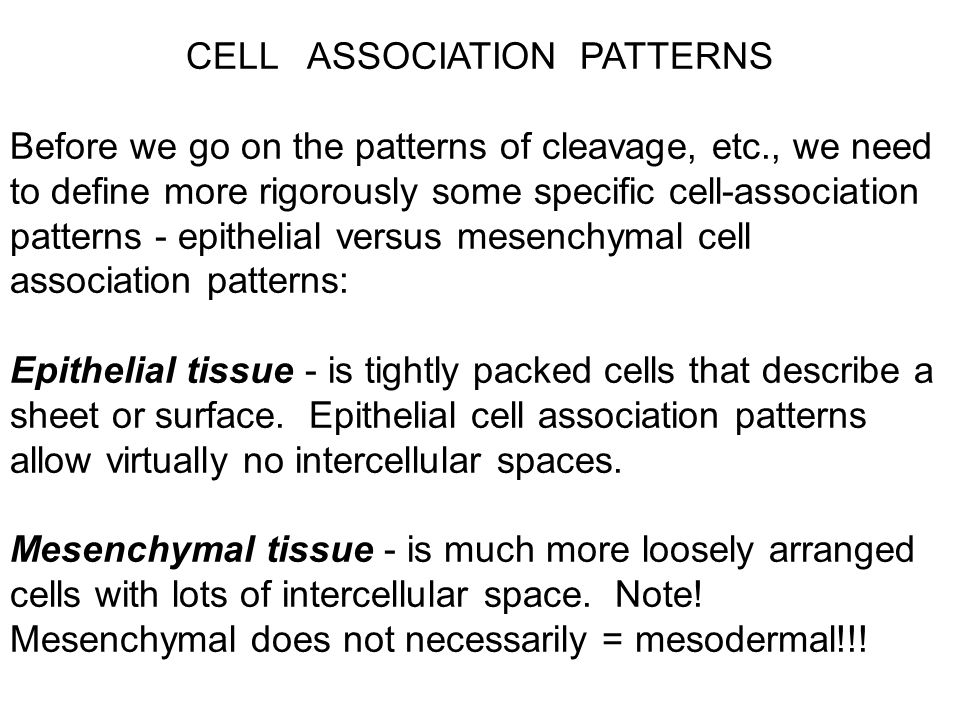 CELL ASSOCIATION PATTERNS