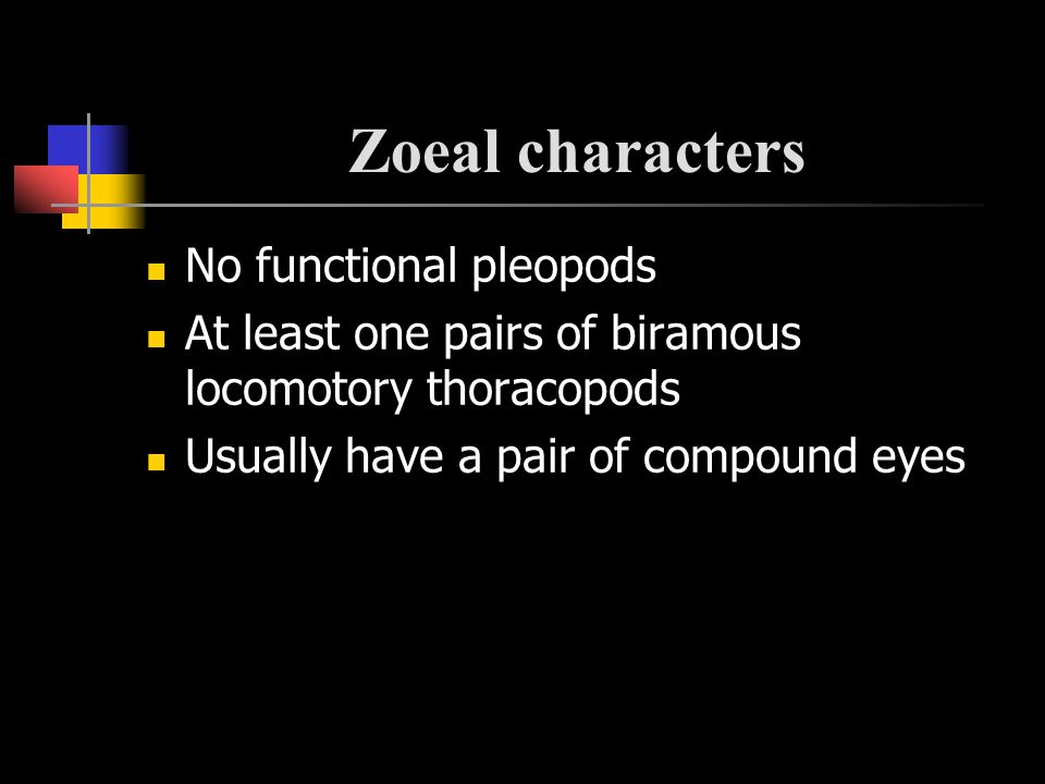 Zoeal characters No functional pleopods