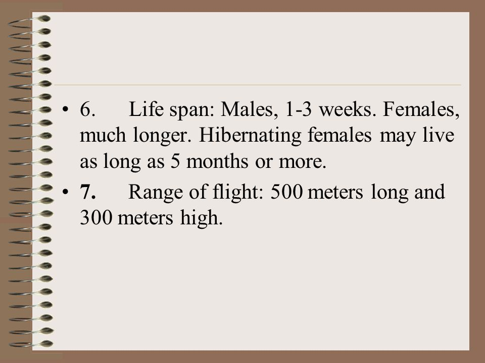 6. Life span: Males, 1-3 weeks. Females, much longer