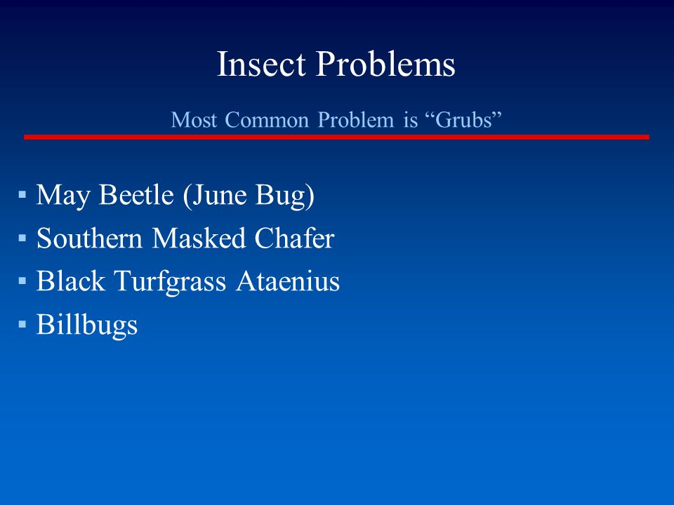Most Common Problem is Grubs