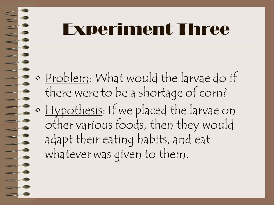 Experiment Three Problem: What would the larvae do if there were to be a shortage of corn