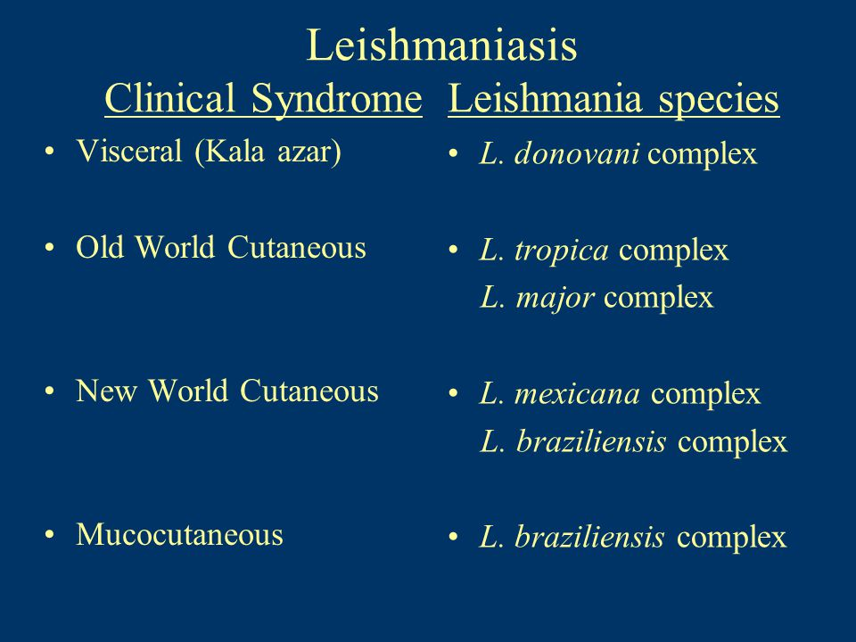 Leishmaniasis Clinical Syndrome Leishmania species