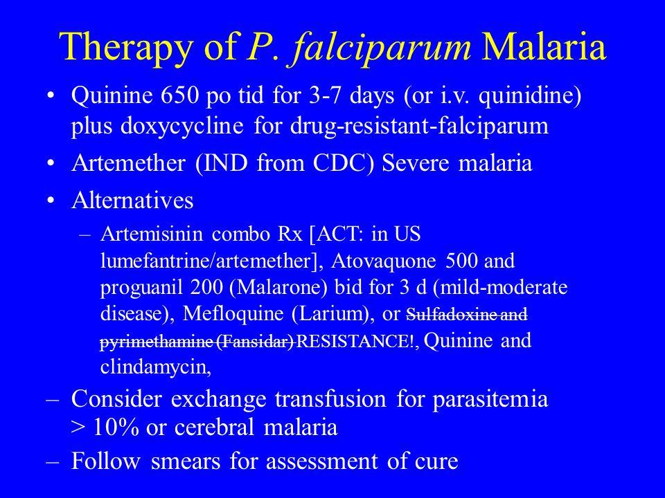 Therapy of P. falciparum Malaria