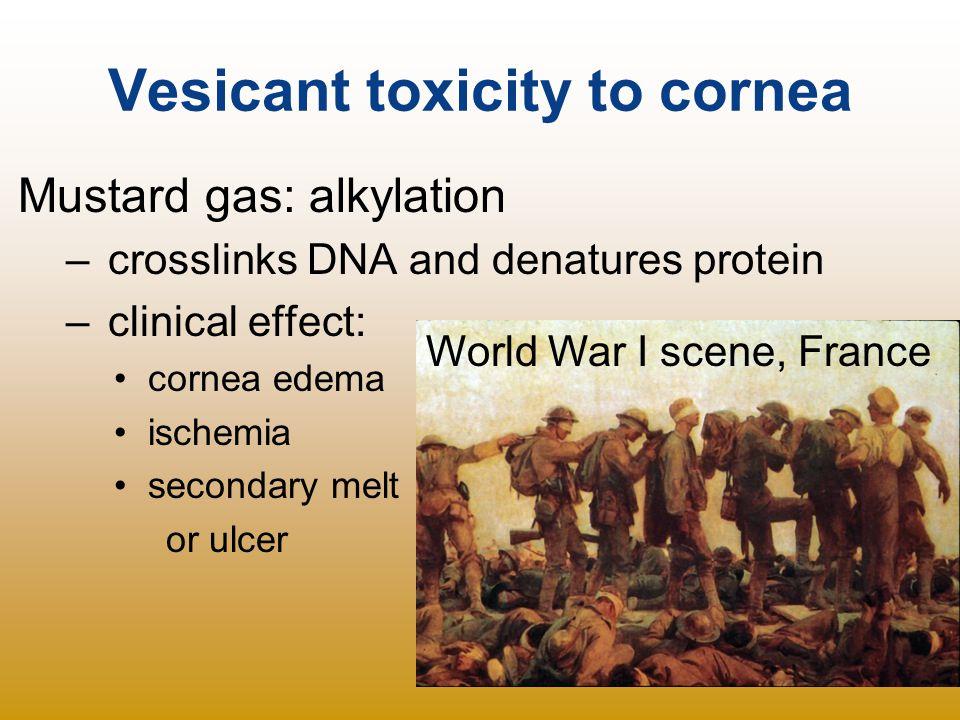 Vesicant toxicity to cornea
