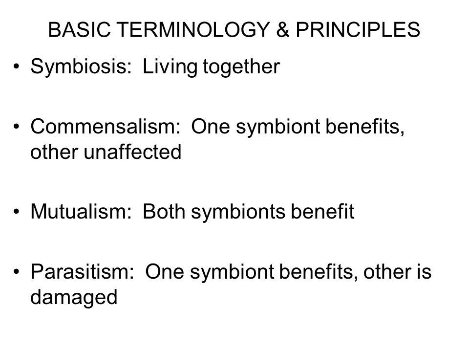 BASIC TERMINOLOGY & PRINCIPLES