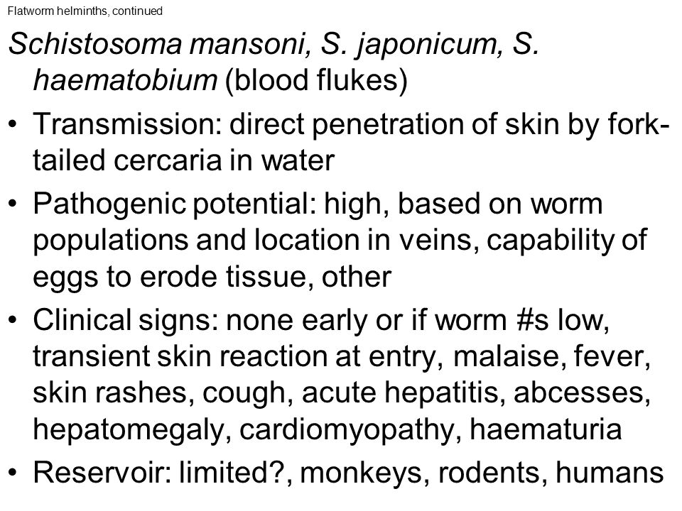 Schistosoma mansoni, S. japonicum, S. haematobium (blood flukes)