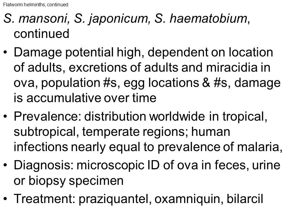 S. mansoni, S. japonicum, S. haematobium, continued