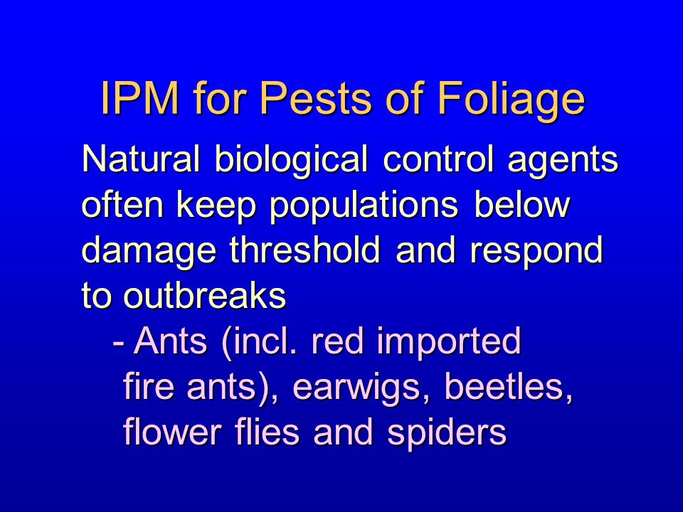 IPM for Pests of Foliage