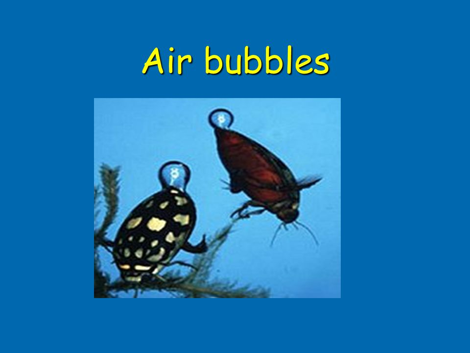 Air bubbles