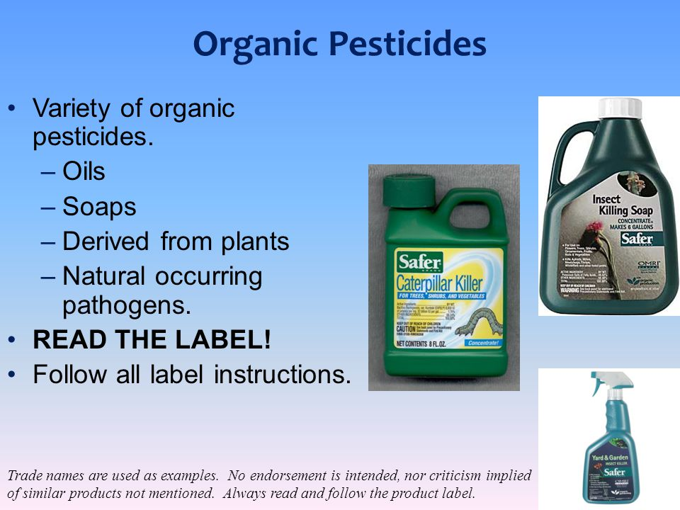 Organic Pesticides Variety of organic pesticides. Oils Soaps