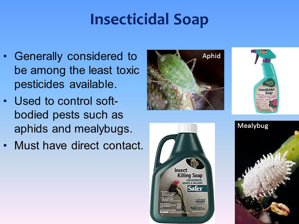Insecticidal Soap Generally considered to be among the least toxic pesticides available.