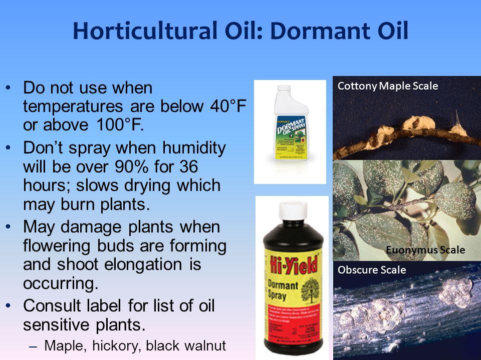 Horticultural Oil: Dormant Oil
