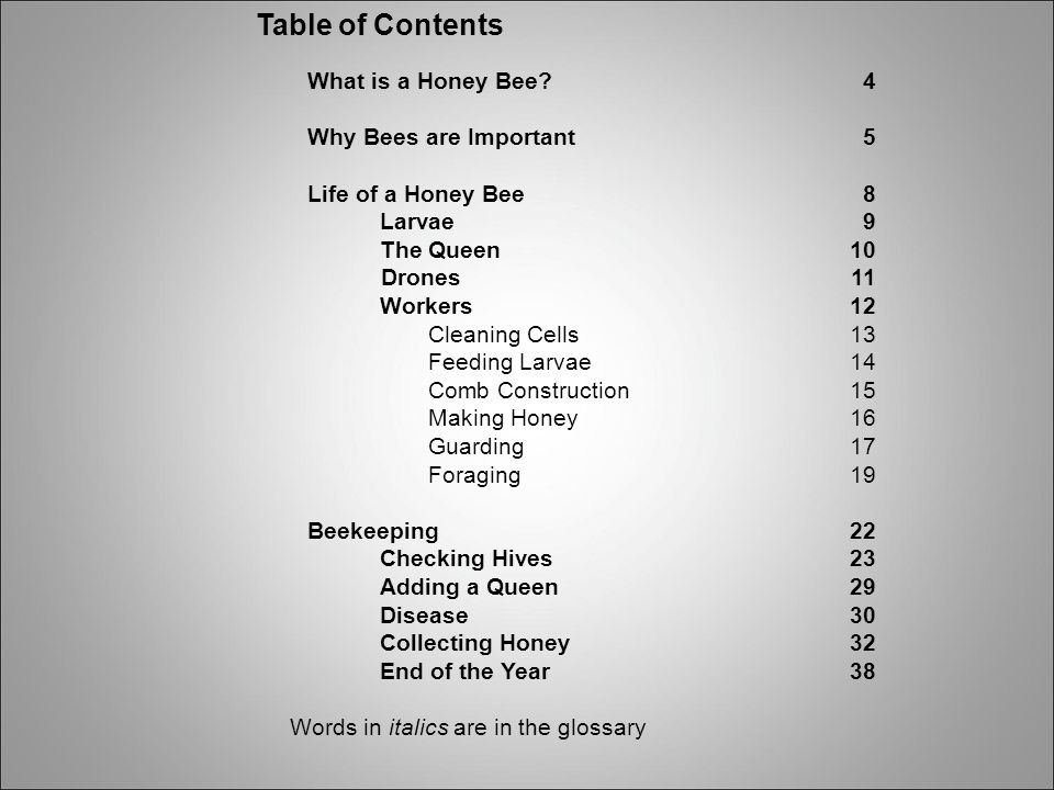Table of Contents What is a Honey Bee 4 Why Bees are Important 5
