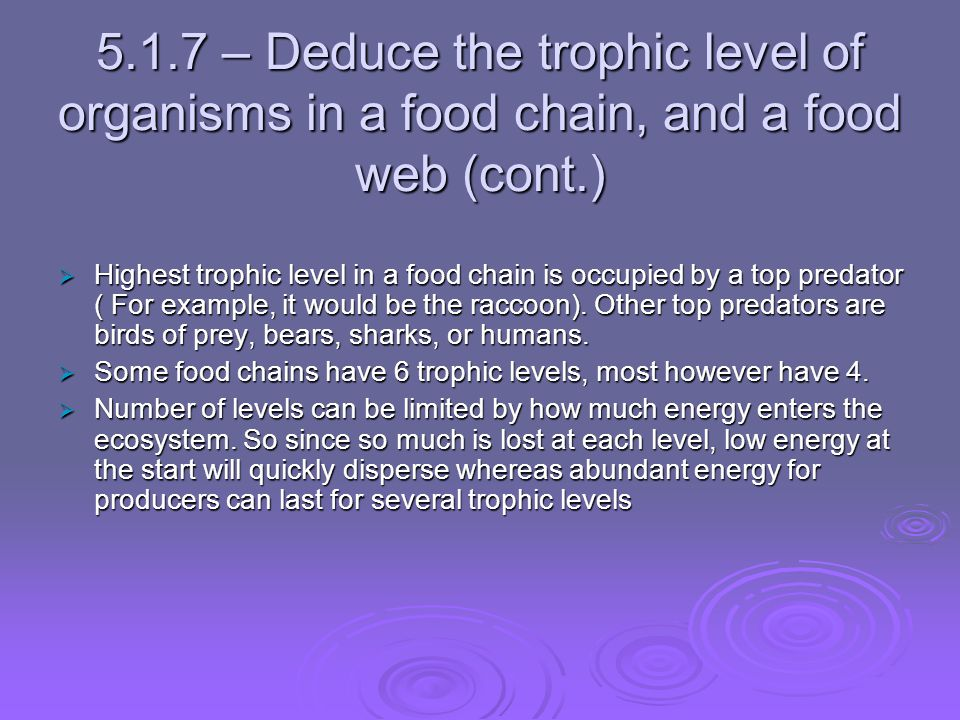 5.1.7 – Deduce the trophic level of organisms in a food chain, and a food web (cont.)