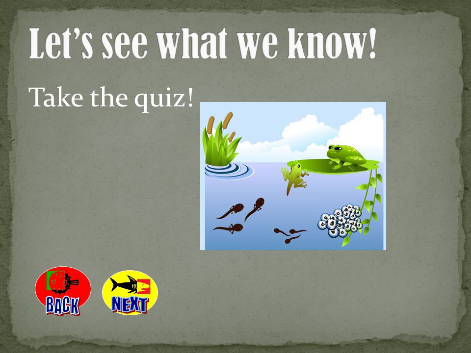 Let's see what we know! Take the quiz! BACK NEXT