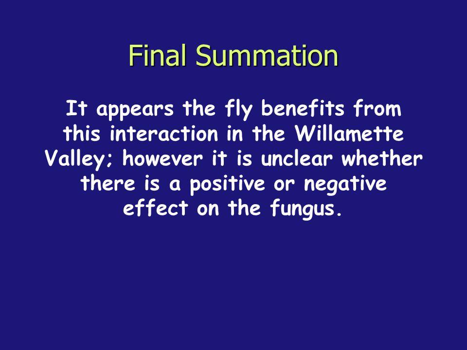 Final Summation