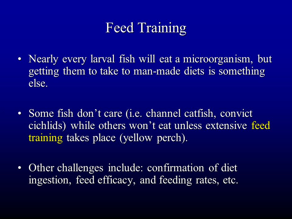 Feed Training Nearly every larval fish will eat a microorganism, but getting them to take to man-made diets is something else.