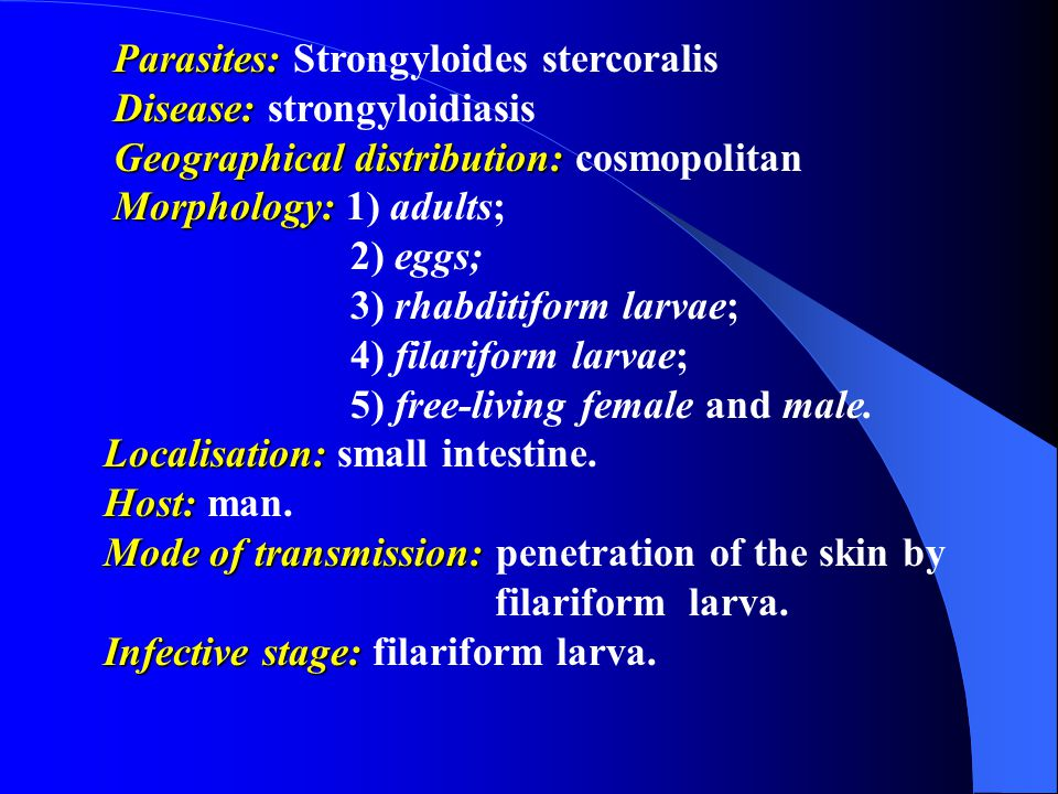 Parasites: Strongyloides stercoralis
