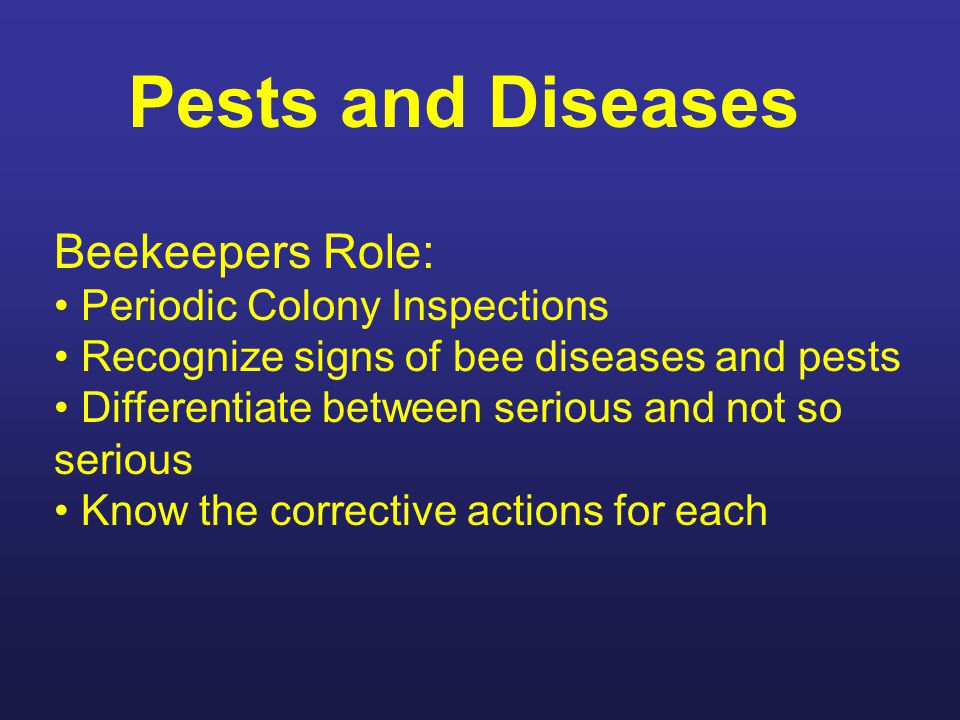 Pests and Diseases Beekeepers Role: Periodic Colony Inspections