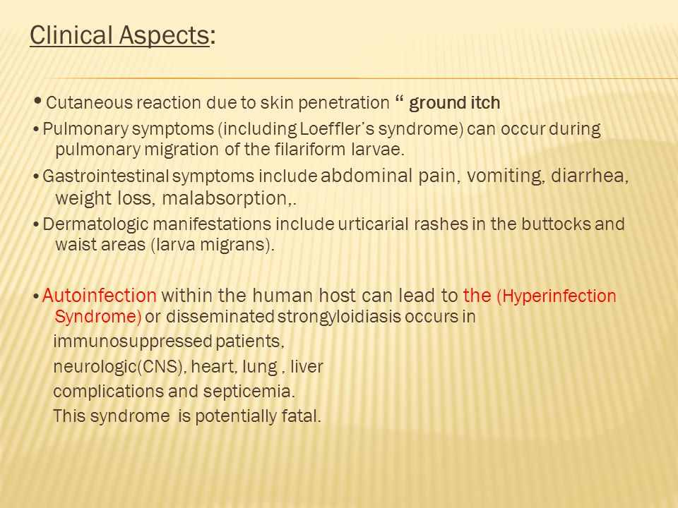 Clinical Aspects: •Cutaneous reaction due to skin penetration ground itch.