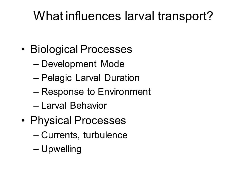 What influences larval transport