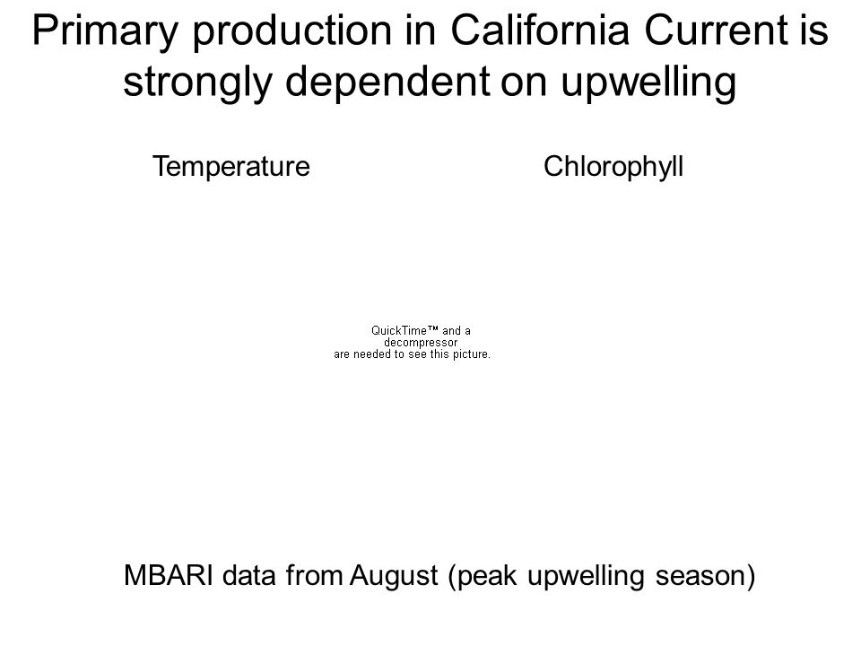 Primary production in California Current is strongly dependent on upwelling