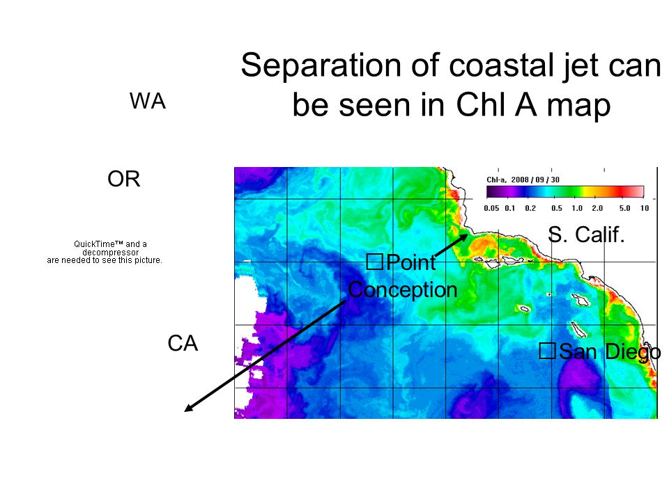 Separation of coastal jet can be seen in Chl A map