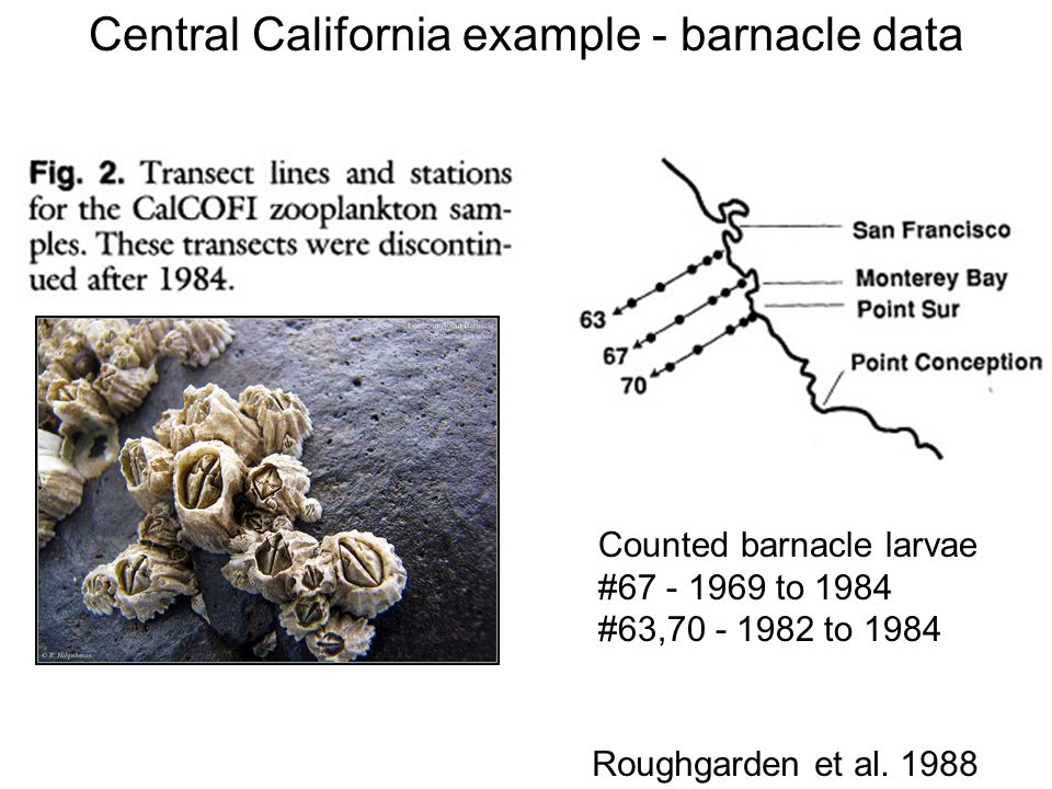 Central California example - barnacle data