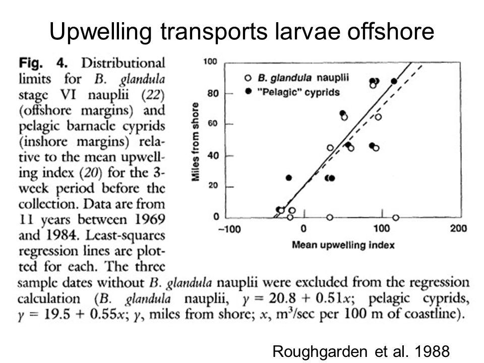 Upwelling transports larvae offshore