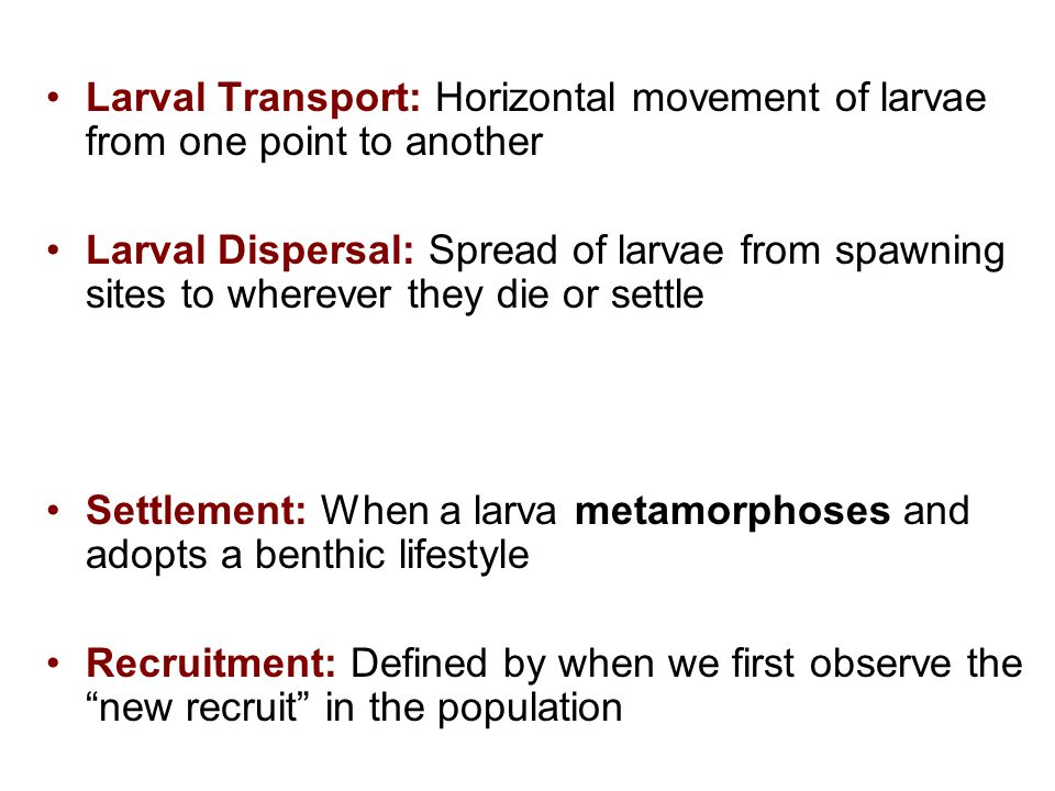 Larval Transport: Horizontal movement of larvae from one point to another