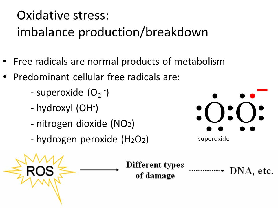 Oxidative stress: imbalance production/breakdown