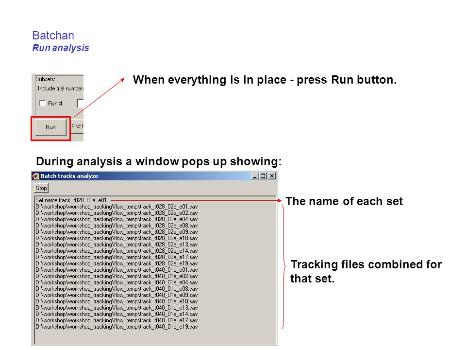 Batchan Run analysis When everything is in place - press Run button. During analysis a window pops up showing: