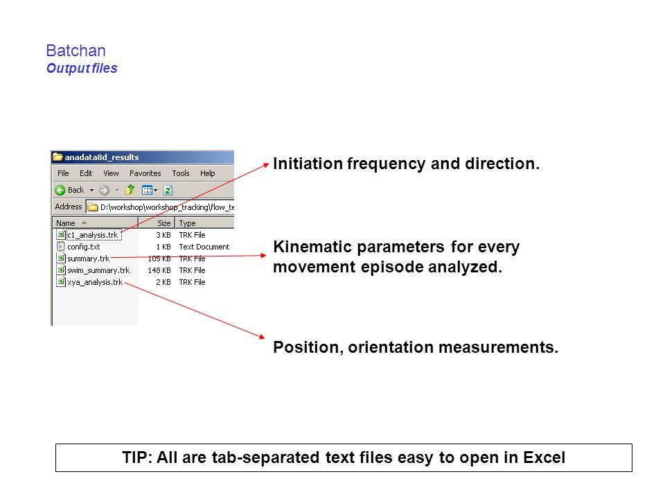 TIP: All are tab-separated text files easy to open in Excel