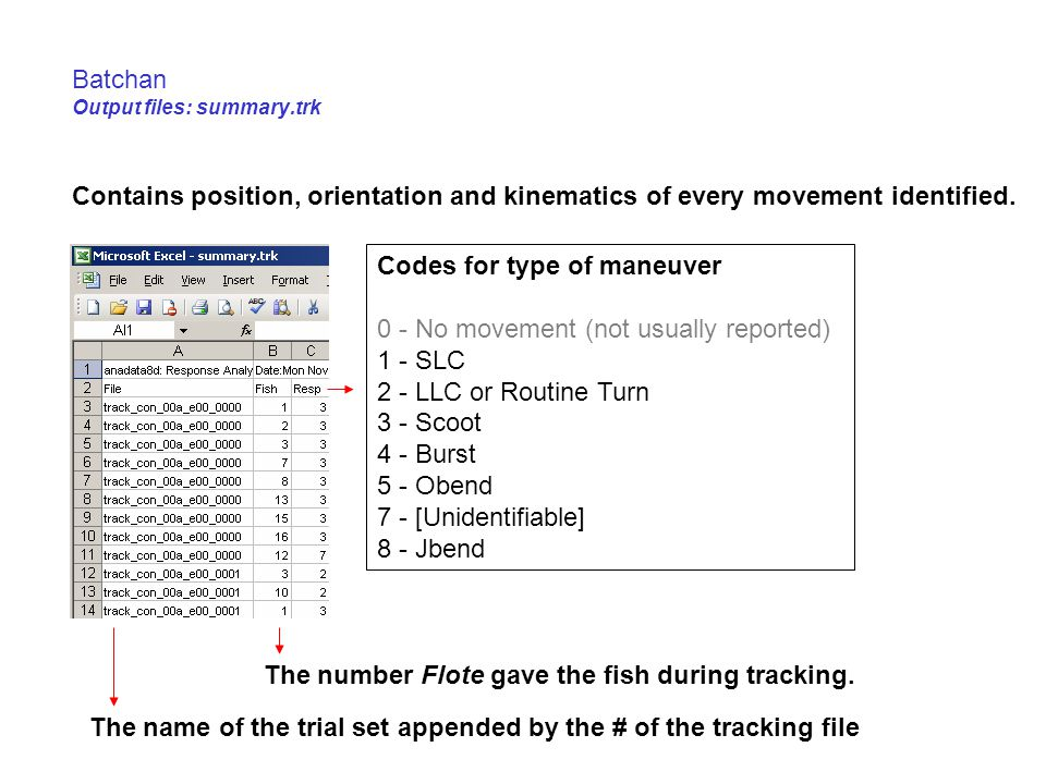 Batchan Output files: summary.trk