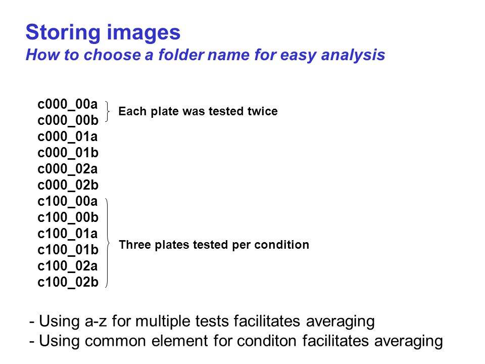 Storing images How to choose a folder name for easy analysis