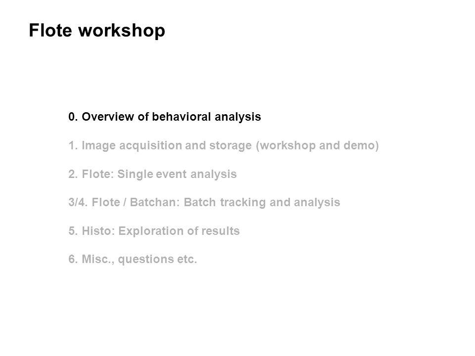 Flote workshop 0. Overview of behavioral analysis