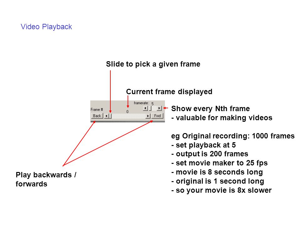 Video Playback Slide to pick a given frame. Current frame displayed. Show every Nth frame. - valuable for making videos.