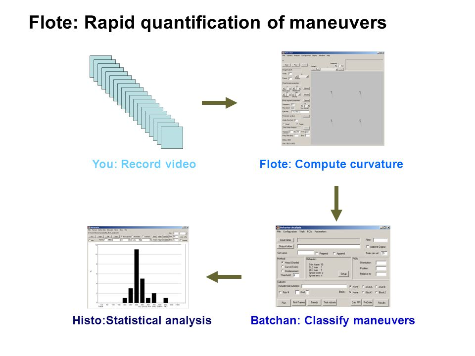 Flote: Rapid quantification of maneuvers